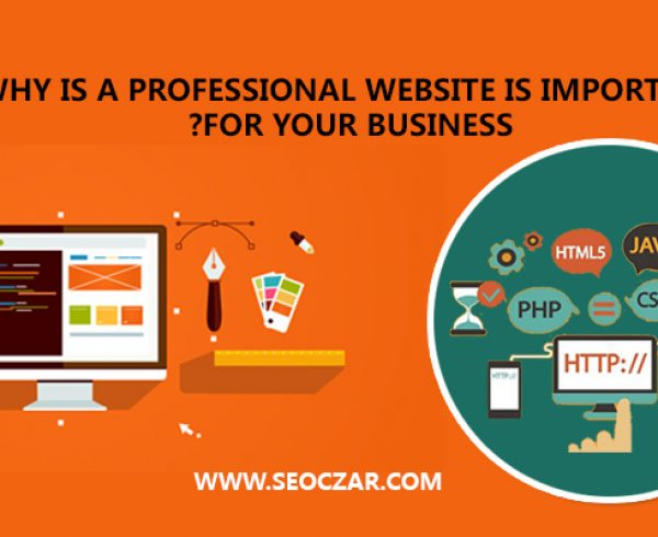 Why-is-a-professional-website-is-important-for-your-business-
