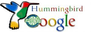 Hummingbird Update logo