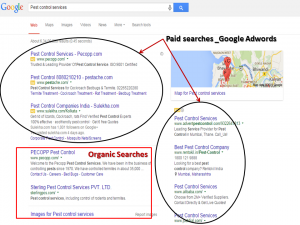 difference between organic and paid search results